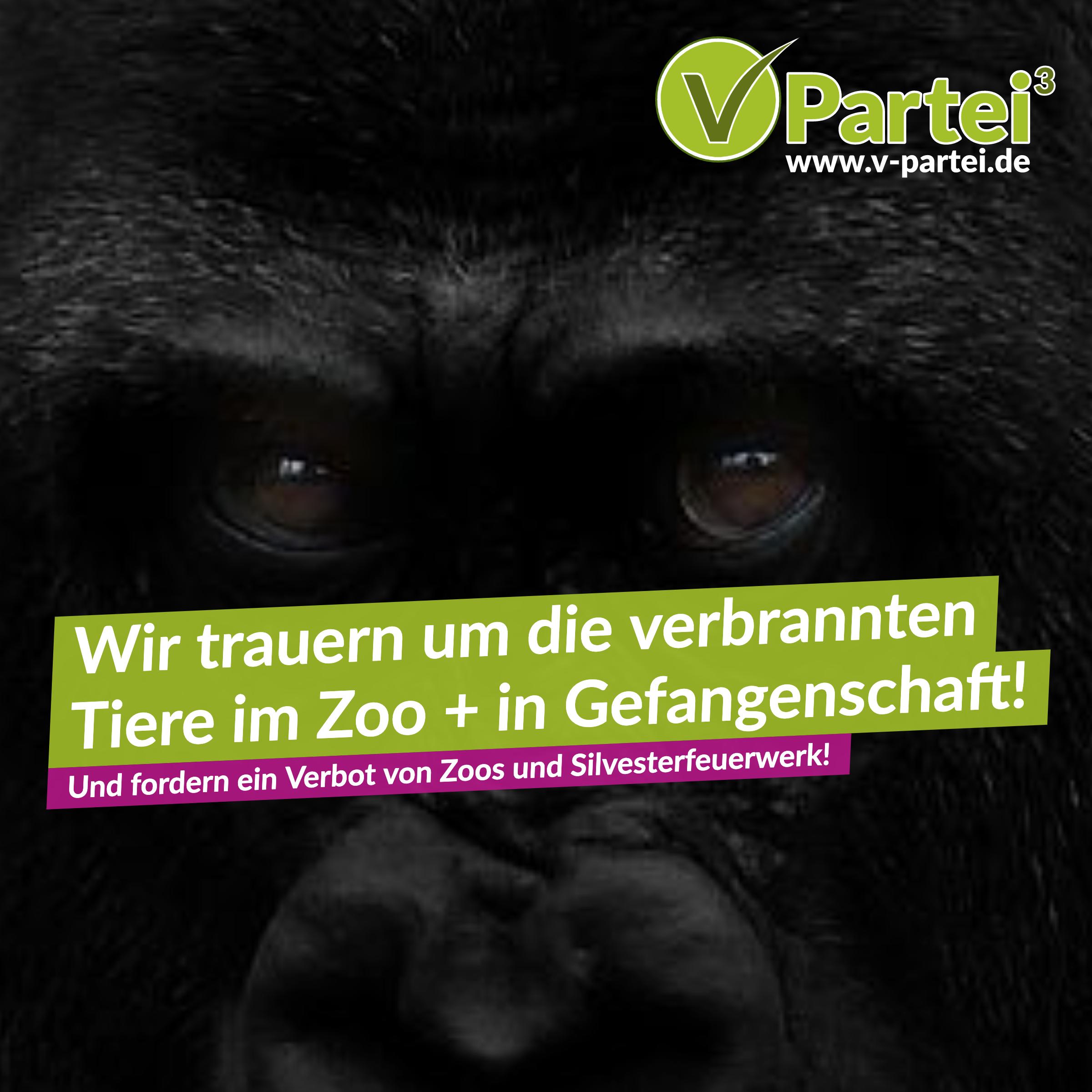 v partei³ verurteilt system zoo und silvesterfeuerwerk v  die v partei%c2%b3 moechte ein zeichen setzen #1