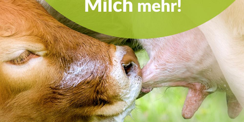 Milchindustrie: 500 Millionen Euro Werbung