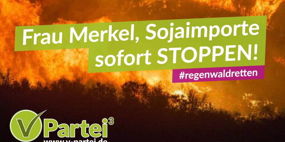 Petition: Sojaimport aus Brasilien stoppen!