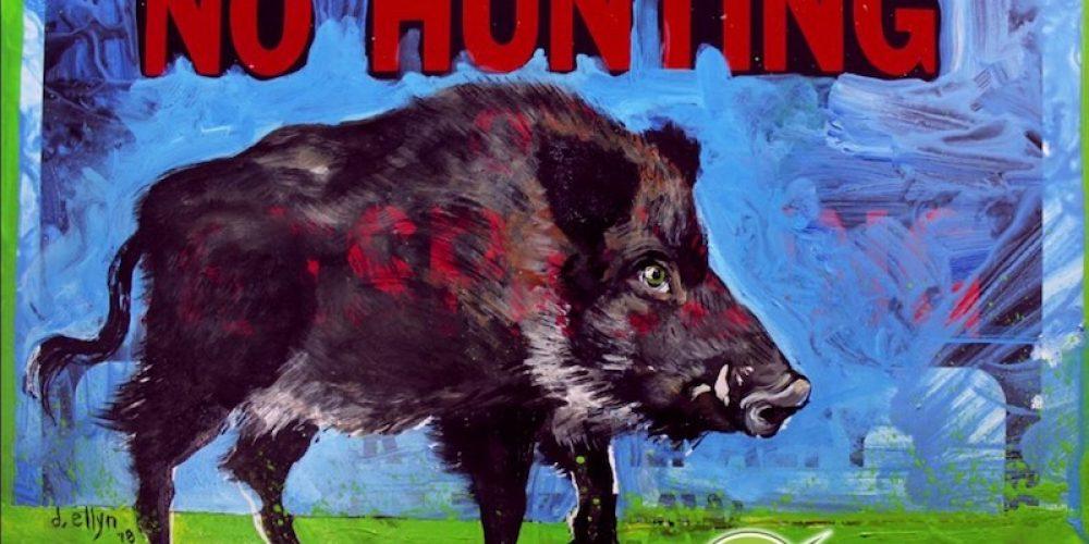 """""""Vorbeugende"""" Jagd auf Wildschweine: blinder oder verräterischer Aktionismus?"""