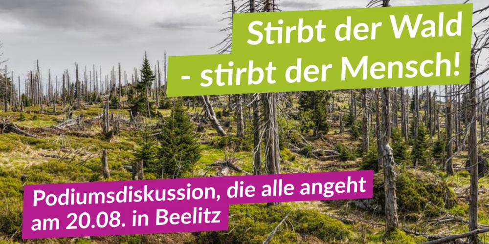 Podiumsdiskussion zum Thema Wälder in Brandenburg