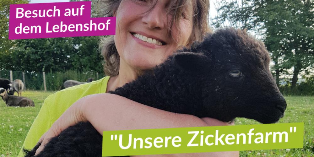 """""""Die kleine Zickenfarm"""" in Bad Grönenbach"""