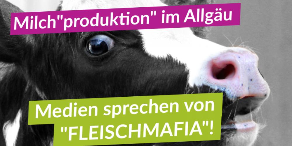 Nach Aufdeckung entsetzlicher Tierquälerei in bayerischem Milchbetrieb