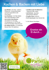 ei-ersatz-flyer
