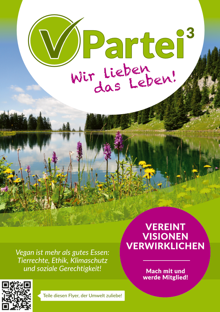 Flyer V-Partei Programm