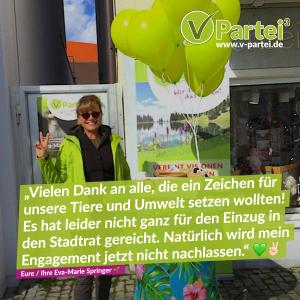 Kommunalwahl Höchstädt Bayern 2020 V-Partei